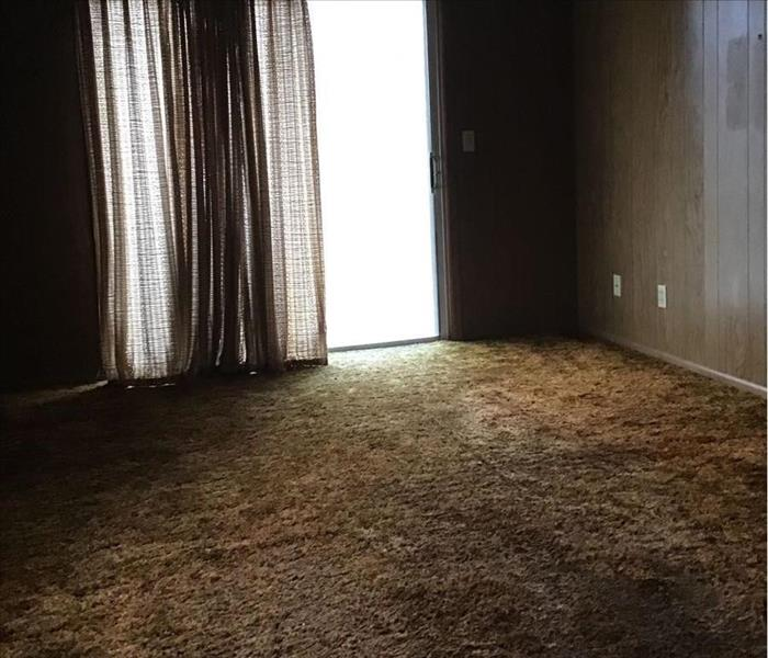 Wet carpet in an empty room.