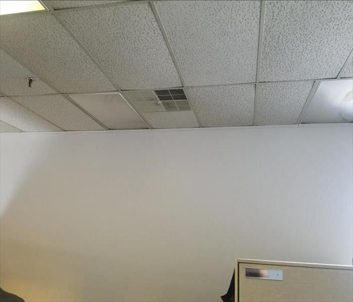 Office Ceiling Tile After