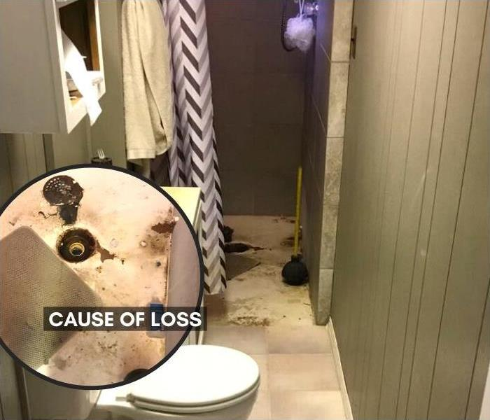 Damage and cause of loss image