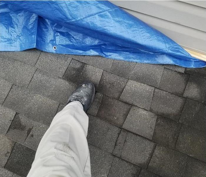 Roof/shingles damaged from a storm.