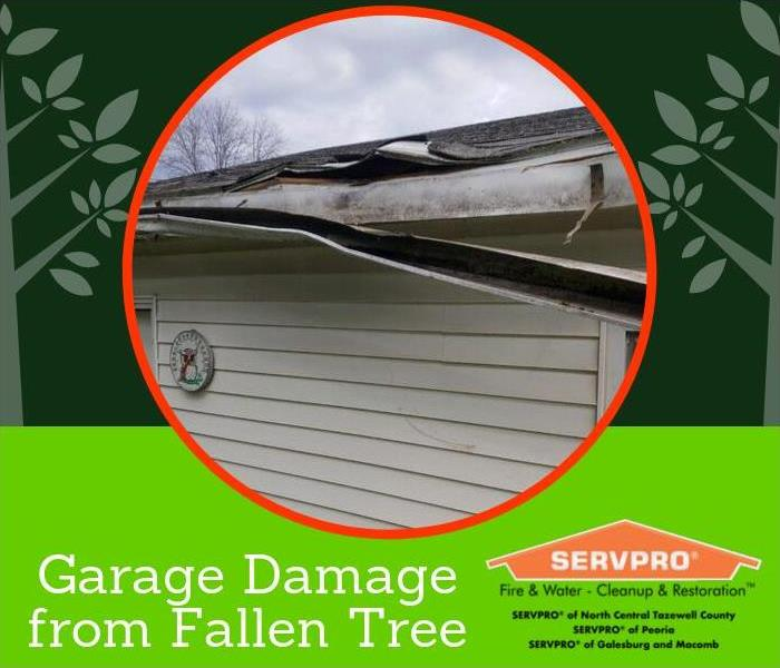 Storms damaged a garage with falling tree branches. The gutter and multiple shingles were knocked down.